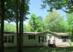 Foreclosure Listings in Gaylord - MI
