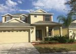 in TAMPA 33647 20325 MERRY OAK AVE - Property ID: 6294884