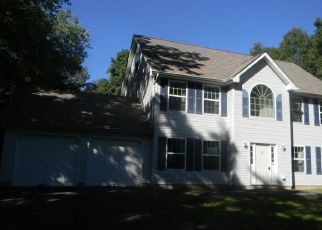 Albrightsville Home Foreclosure Listing ID: 4041498