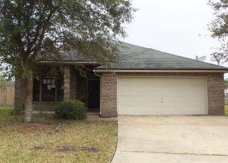 Jacksonville Home Foreclosure Listing ID: 4117090