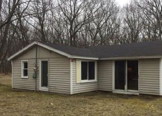 Muskegon Home Foreclosure Listing ID: 4128927
