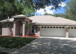 Tampa Home Foreclosure Listing ID: 4133191