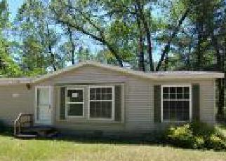 Muskegon Home Foreclosure Listing ID: 4152430