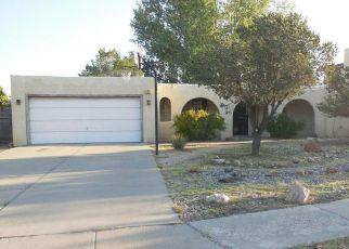 Albuquerque Home Foreclosure Listing ID: 4205957