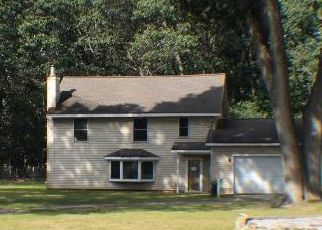 Muskegon Home Foreclosure Listing ID: 4207173