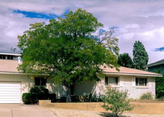 Albuquerque Home Foreclosure Listing ID: 4214766