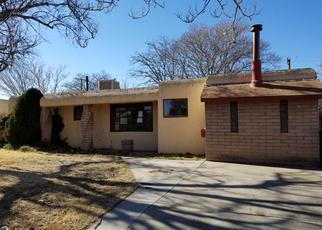 Albuquerque Home Foreclosure Listing ID: 4233369