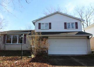 Buffalo Home Foreclosure Listing ID: 4247876