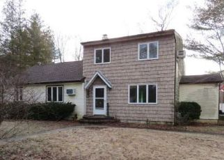 Smithtown Home Foreclosure Listing ID: 4256202