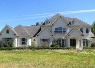 Ocala Home Foreclosure Listing ID: 4259563
