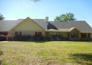 Ocala Home Foreclosure Listing ID: 4259564