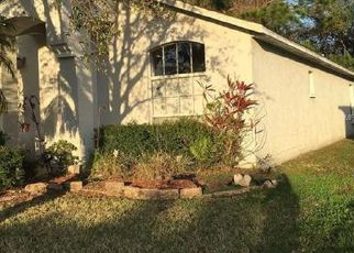 Tampa Home Foreclosure Listing ID: 6308028
